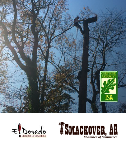 Certified Arborist and Member of the El Dorado, AR and Smackover, AR Chamber of Commerce